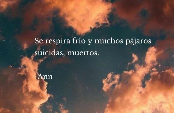 Se respira frío y muchos pájaros suicidas, muertos. -Ann